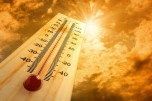 Best Temperature